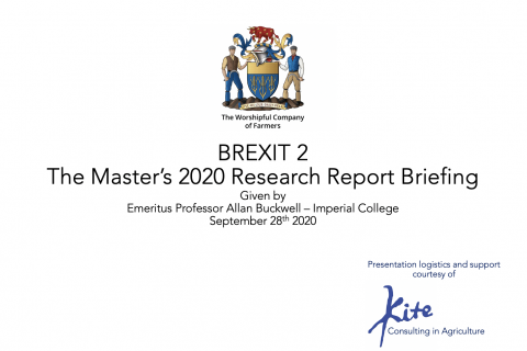 Successful online launch of the 2020 Master's Research Paper