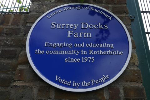 2018 Surrey Docks Farm visit