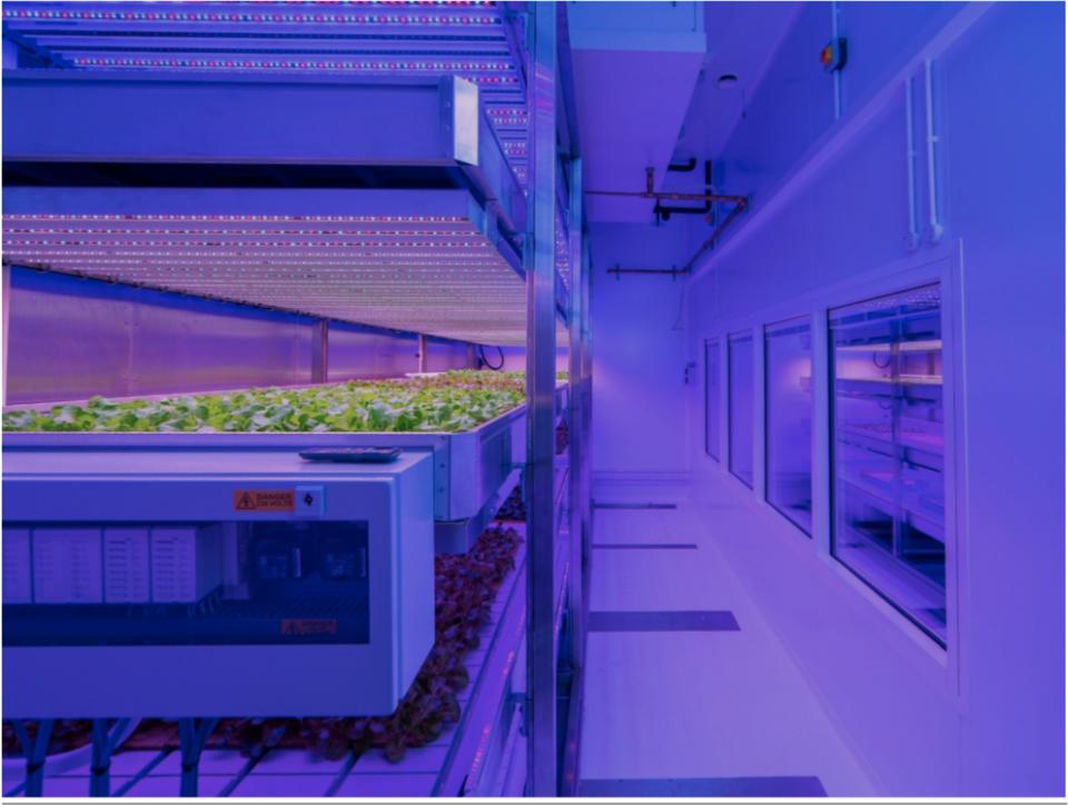 Indoor farming pic